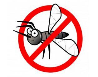 Muggen: 1 probleem, 4 oplossingen!